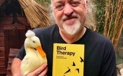 Good Egg of the Month: Bill Bailey